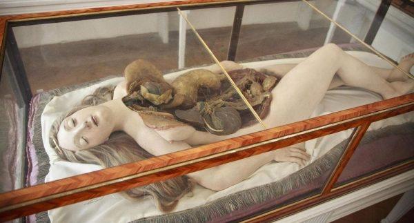 anatomik-venus-10