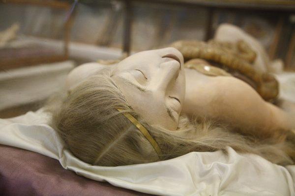 anatomik-venus-4