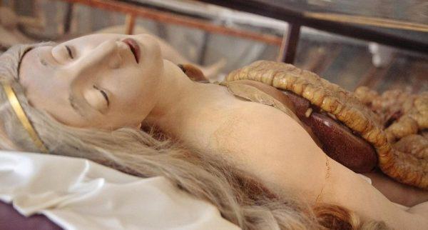 anatomik-venus-9