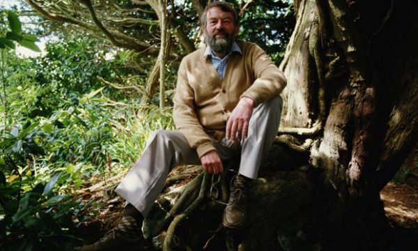 Writer John Fowles