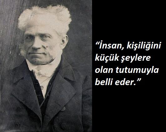 Die nur 9,3 x 7,2 cm große Daguerreotypie zeigt den Philosophen Arthur Schopenhauer (1788-1860), der von 1831 bis zu seinem Tod in Frankfurt lebte. Es ist die älteste Aufnahme, die von Schopenhauer erhalten ist.