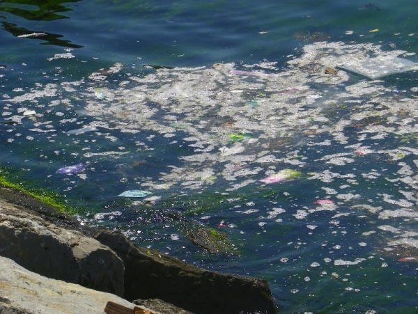 marmara-denizinde-kirlilik
