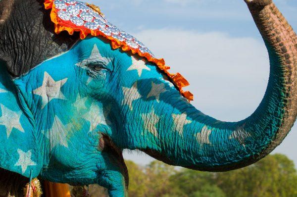 9. Fillerin Katkısı