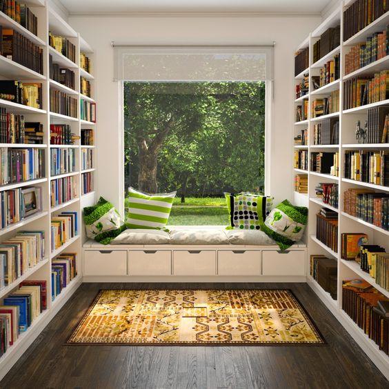 ev kütüphanesi2