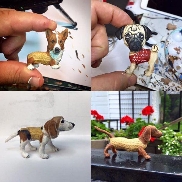 fıstık köpekler