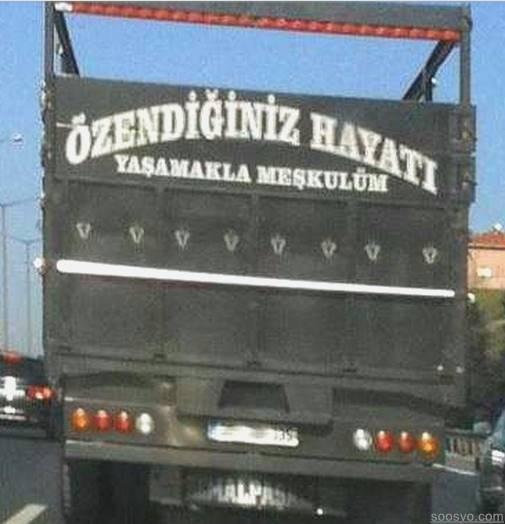 kamyon-yazisi