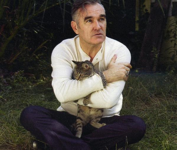 morrissey-kedi