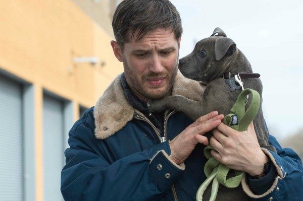 the-drop-tom-hardy-kopek