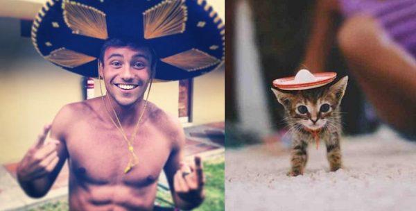 013 erkek vs kedi