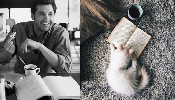 014 erkek vs kedi