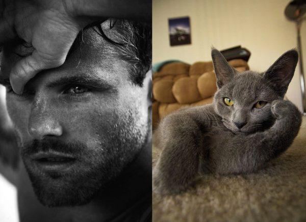025 erkek vs kedi