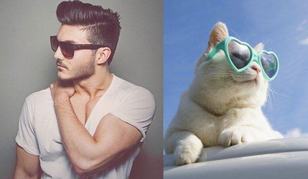026 erkek vs kedi