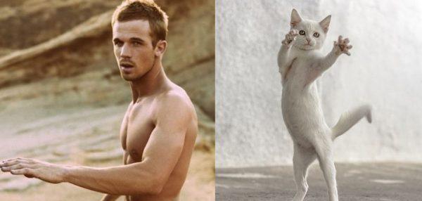 09 erkek vs kedi