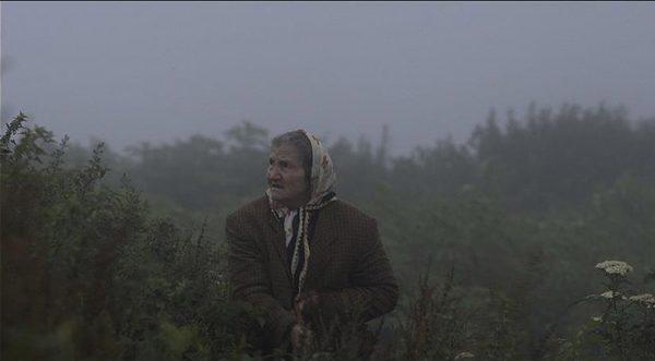 8.  Karadeniz'in dağ köylerinden birinde yaşayan bir ailenin dramı