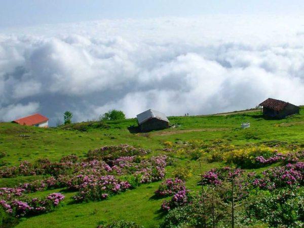 9. Dört mevsim Karadeniz Yaylaları