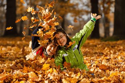 yaprak dökülmesi