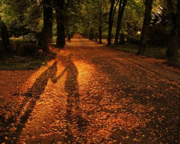 12. Gölgede yaşayanlar, güneşi göremezler.