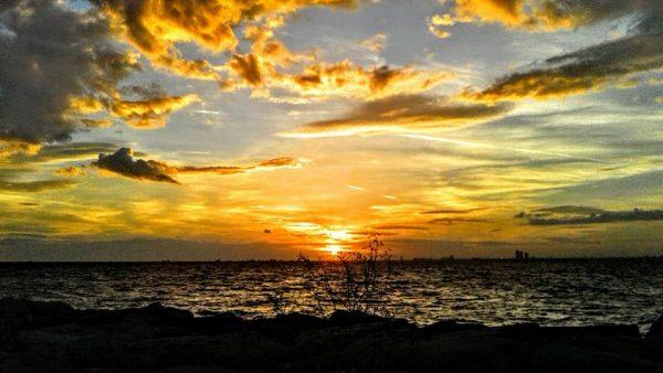 23. Yalnız insan değil hiçbir şey kusursuz olamaz. En saf suyun gizli bir tortusu vardır ve arayınca güneşin bile lekeleri bulunur.