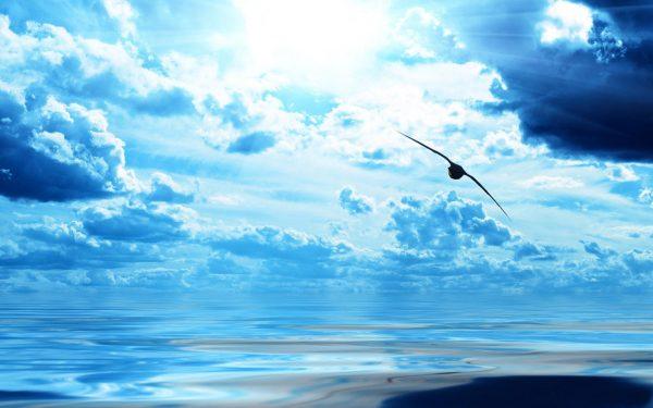 26. Temiz alınların üstünde yalnız bir gök vardır. Doğru ve güzel fikir.