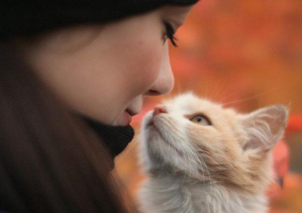 12-hayvan-sevgisi