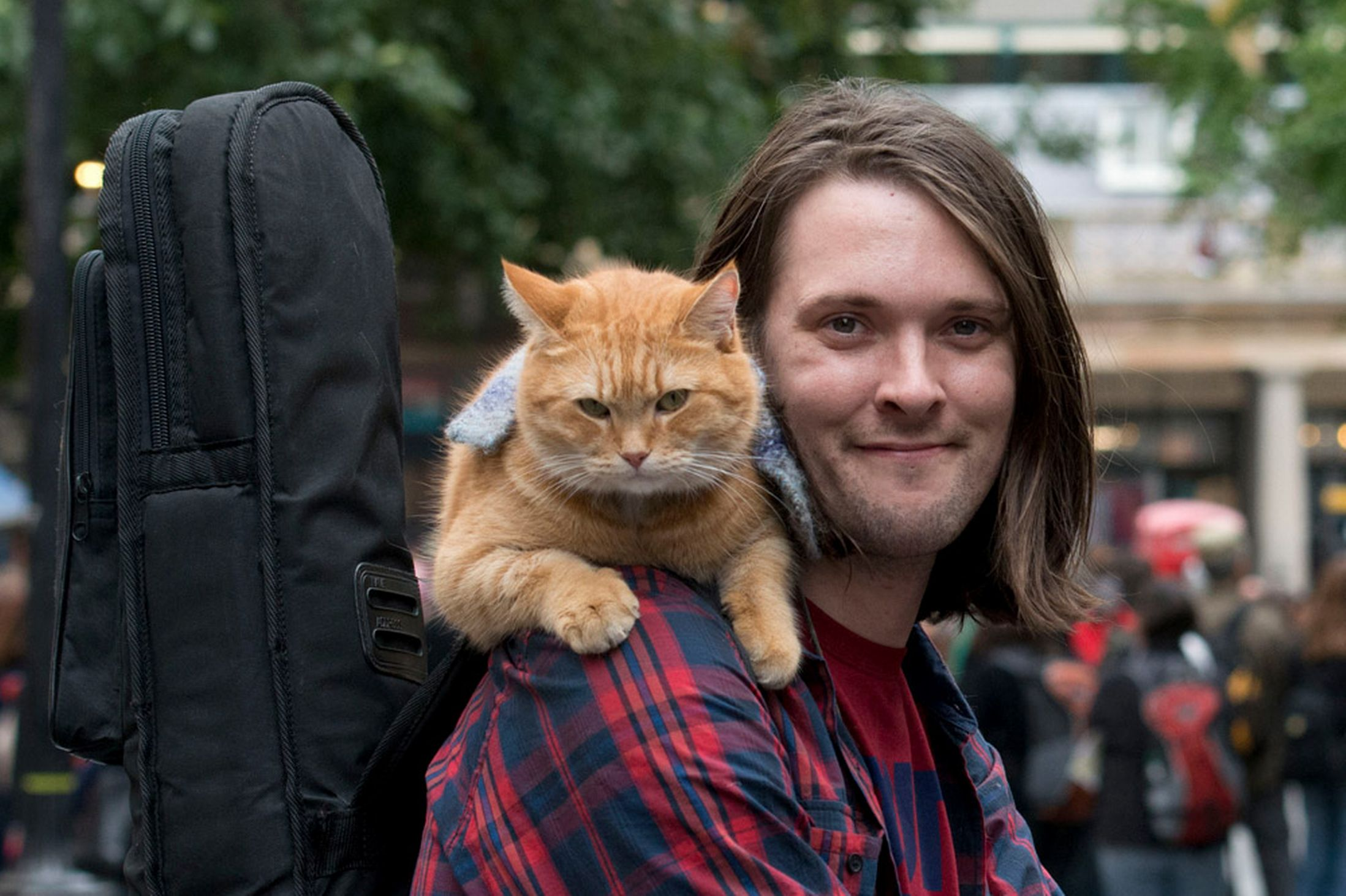 20150302021621-James-Bowen-Street-Cat-Bob