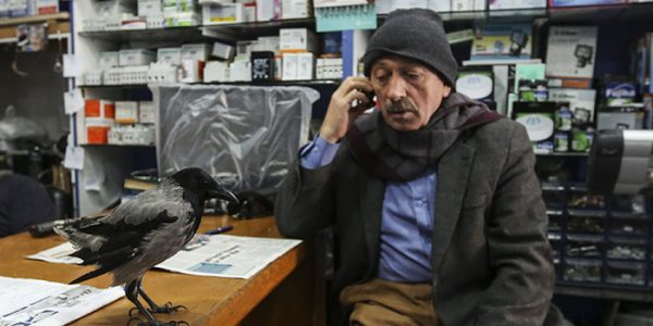 """Üsküdar'da esnaflık yapan ve çevresinde """"karga babası"""" olar"""