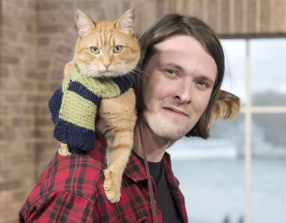 Bob-the-Street-Cat-and-James-Bowen-image-bob-the-street-cat-and-james-bowen-36279728-590-459