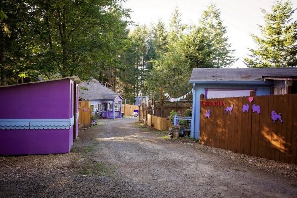 dog-cottages-oregon-shelter-11