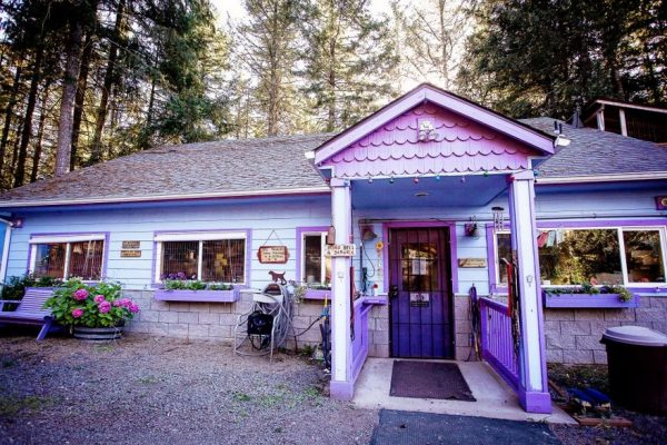 dog-cottages-oregon-shelter-2