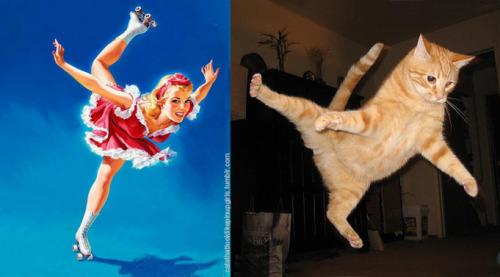 017 pinup kız kedi