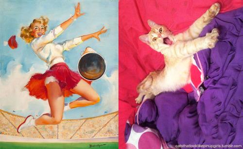 018 pinup kız kedi