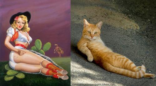 02 pinup kız kedi