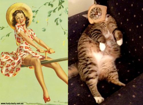 09 pinup kız kedi