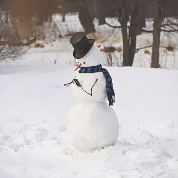 creative-snowman-ideas-46-5853eae865d1e__605