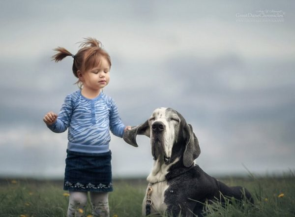 little-kids-big-dogs-photography-andy-seliverstoff-11-584fa9136ae88__880