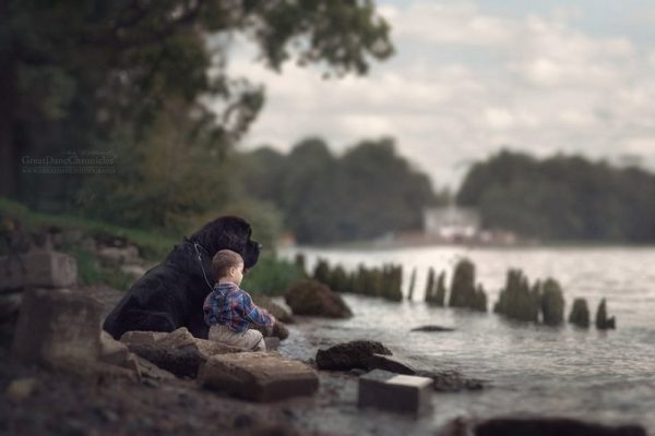 little-kids-big-dogs-photography-andy-seliverstoff-17-584fa91d88e5d__880