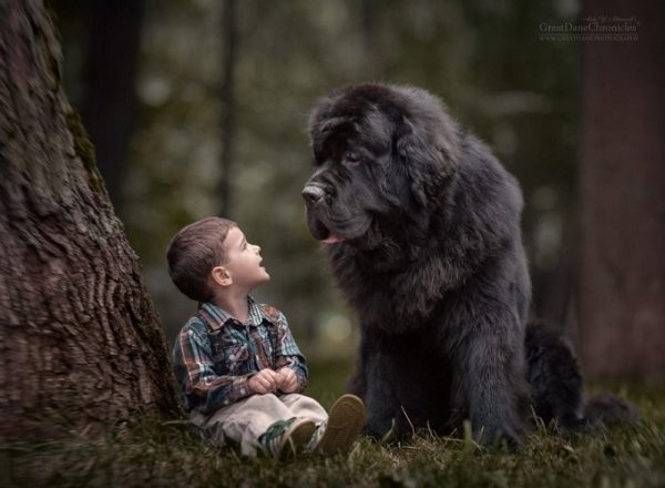 little-kids-big-dogs-photography-andy-seliverstoff-18-584fa91fa298c__880