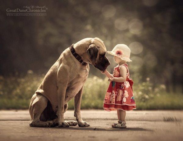 little-kids-big-dogs-photography-andy-seliverstoff-26-584fa930ad1a9__880
