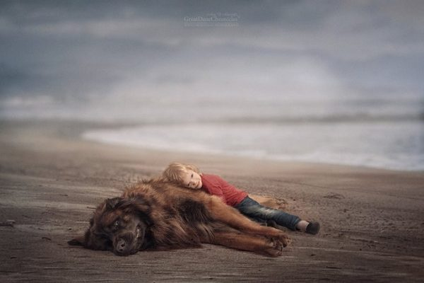 little-kids-big-dogs-photography-andy-seliverstoff-34-584fa94499c1f__880