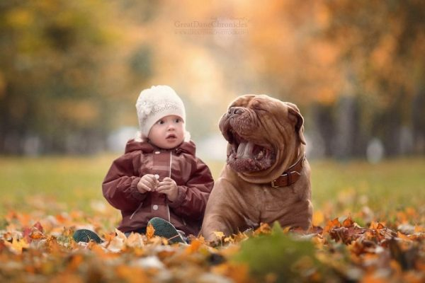 little-kids-big-dogs-photography-andy-seliverstoff-53-584fa977bce19__880