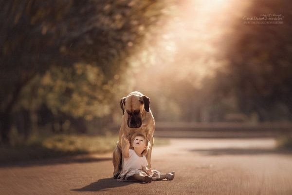 little-kids-big-dogs-photography-andy-seliverstoff-8-584fa90d9599d__880