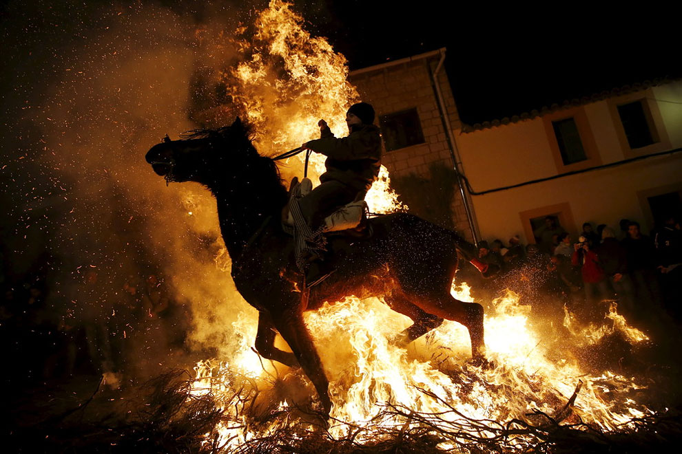 religious celebration on the eve of Saint Anthony's day, Spain's patron saint of animals, in the village of San Bartolome de Pinares, northwest of Madrid, Spain, January 16, 2016.