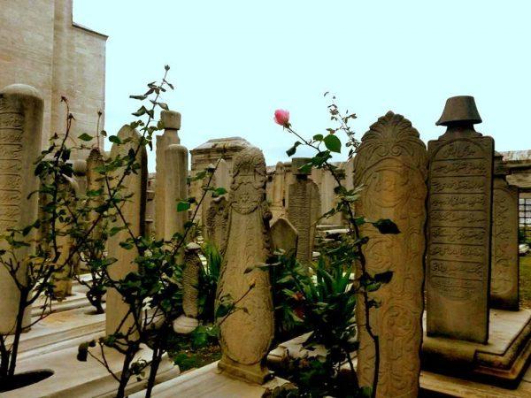 14. Anadolu'da bir köy mezarlığına gömün beni