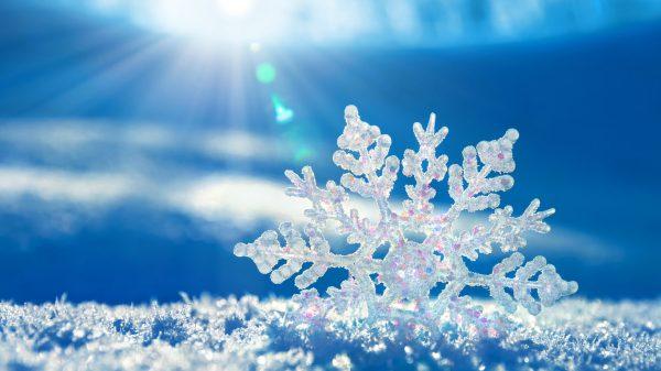 9. Kar Aydınlığında