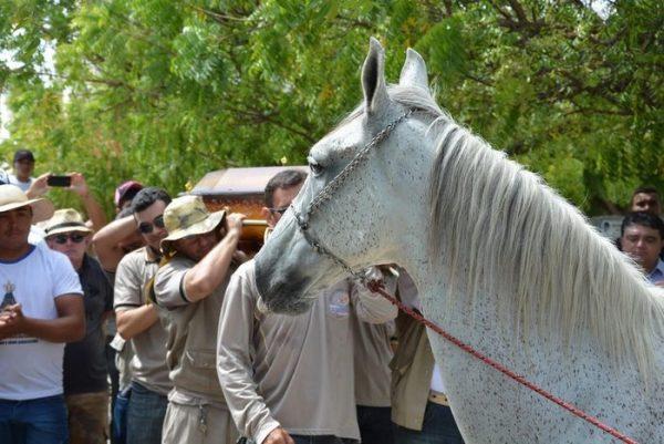 horse-goodbye-owner-funeral-brasil-2
