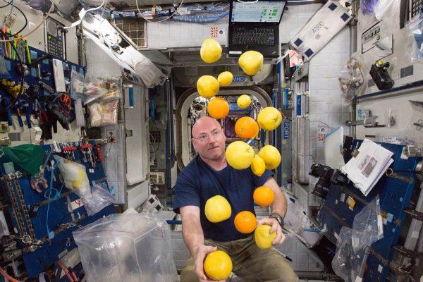 nasa-astronaut-scott-kelly-corrals-the-supply-of-fresh-fruit-that-arrived-on-the-kounotori-5-h-ii-transfer-vehicle