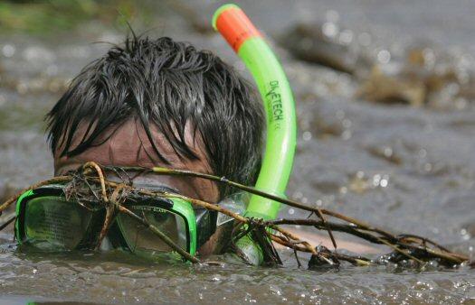 shnorkel