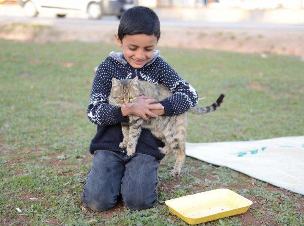 refugee-boy-helps-injured-stray-dog-turkey-2-58afe42c4f576__880