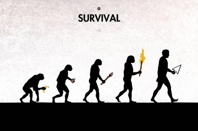 01 evrim