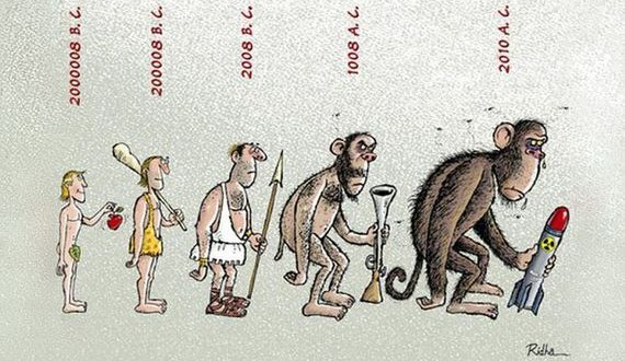 017 evrim